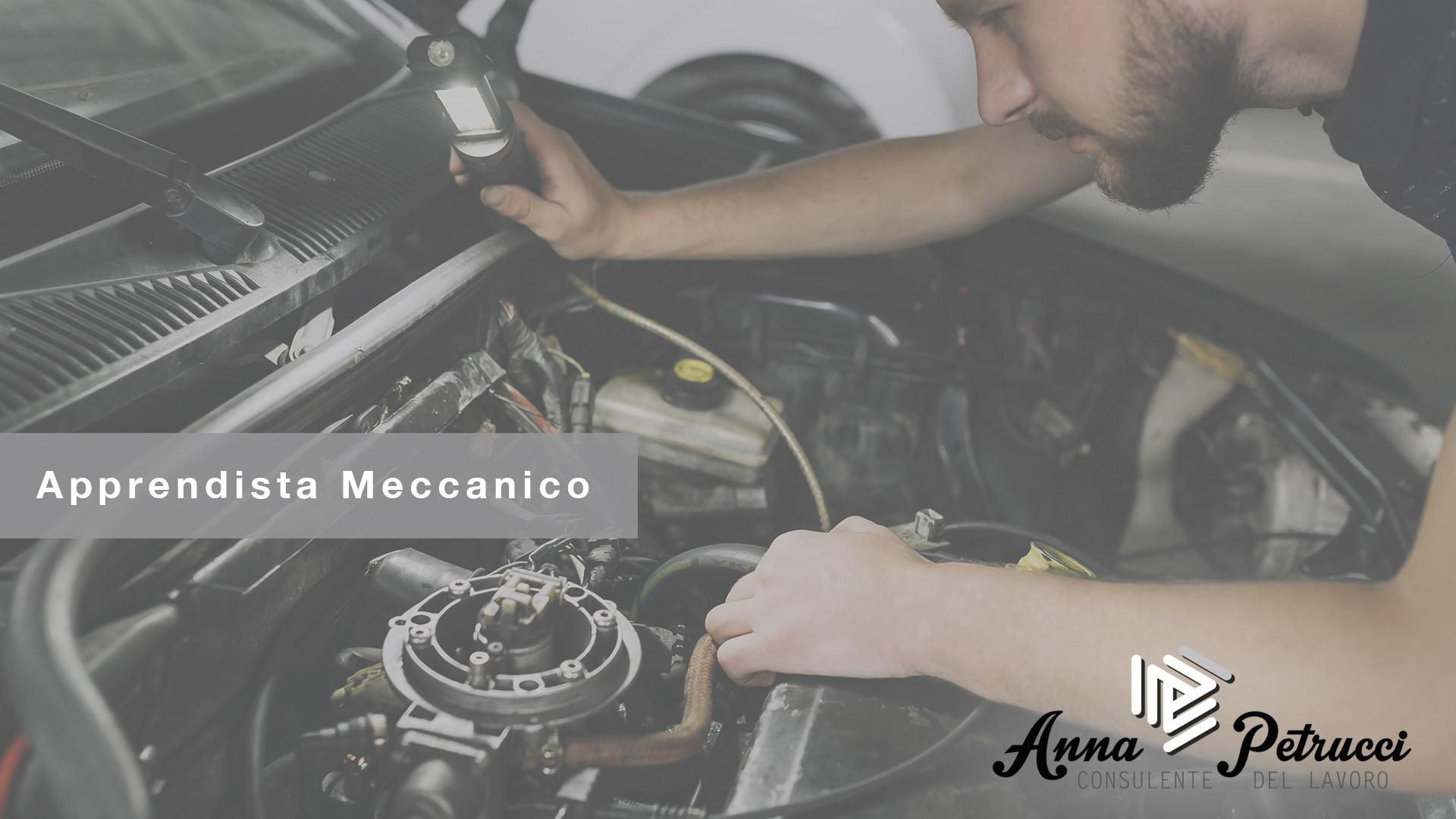 Apprendista Meccanico Massarosa